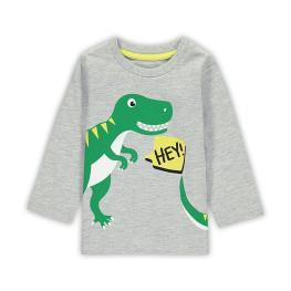 Детска блузка - Dino