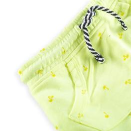 Къси панталонки - Палми