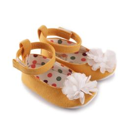 Буйки балеринки с цвете